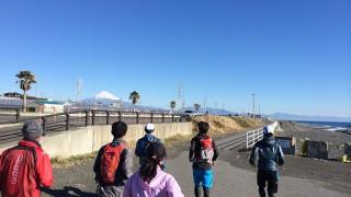 街から山と海、そして港へ。静岡市の名所をめぐる静岡マラソン2014