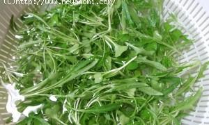水菜&サニーレタスの「ベビーリーフサラダ」