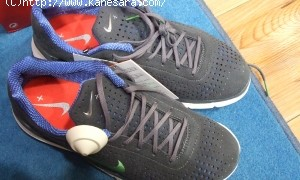 Nike+ ipod nanoと Air zoom moireでITジョギング