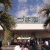 サブフォー達成か? 掛川新茶マラソン2009