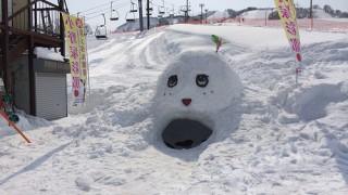 石打丸山スキー場でコブ斜面練習