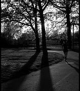 ジョギングが仕事の効率アップにつながる理由