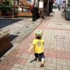 2012年前半が終了 – 静岡暮らし記 6/24-6/30