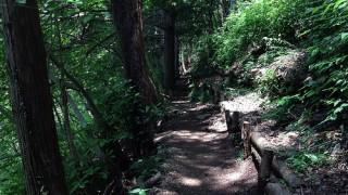 トレイルランニング 足指を岩の激突から保護する方法