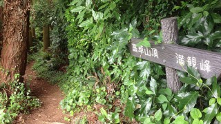 トレイルラン 花沢の里-鞍掛峠-高草山