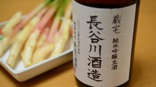 新潟の老舗地酒を、静岡グルメで迎え撃ってみました