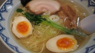 サスケsasukeさんで慈悲深い鶏塩ラーメンをいただく 焼津市八楠
