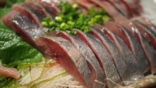 尾赤アジは静岡の味
