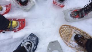 雪の上を歩くだけ。でも面白い! スノーシュー体験 #冬のカナディアンロッキー
