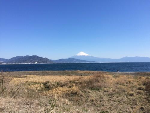 三保からの富士山