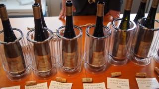 ワイン好きを語るなら、オーストリアワインは飲んでおいた方がよい