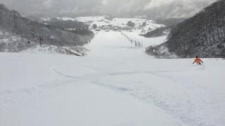 雪のあるスキー場の探し方2016 雪は必ずある!