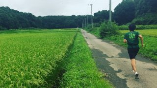 【週記】信州旅行から夏の帰省へ 2017/8/12-8/18