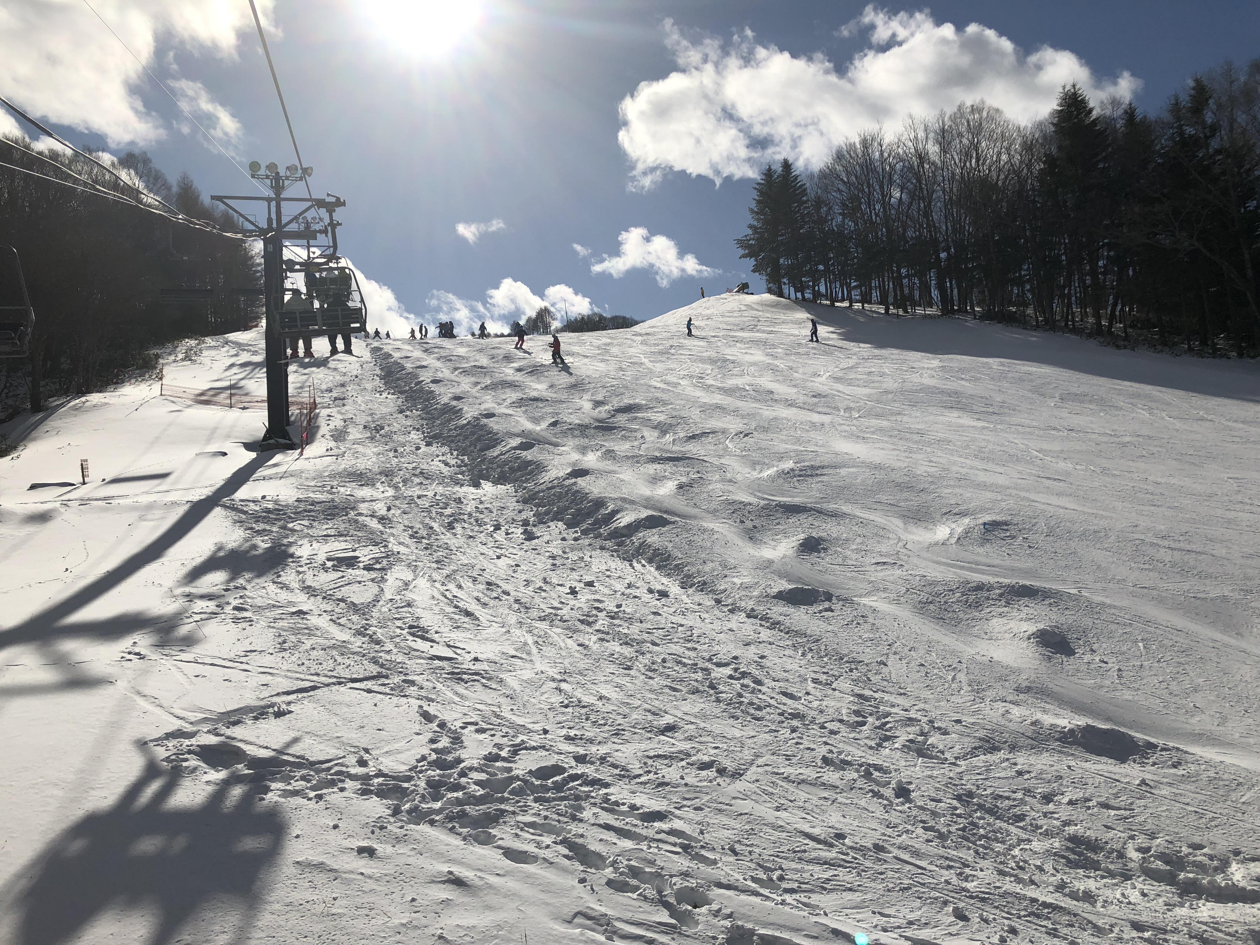スキー 場 白樺 湖 ヒル ロイヤル
