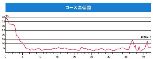 東京マラソン高低差