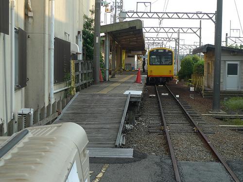 P1050219.JPG