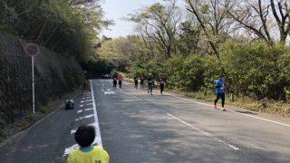 日本平桜マラソン2019 今年も応援に行ってきました